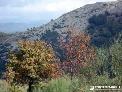 Montaña palentina;senderismo de ensueño senderismo vip